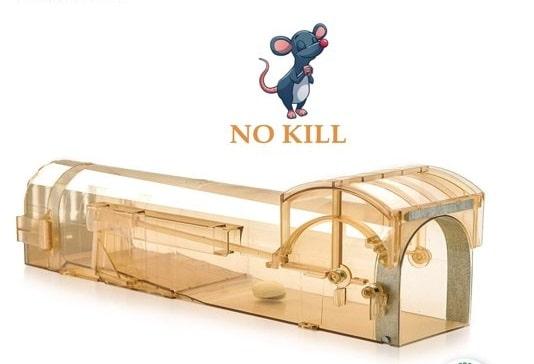 muizenval diervriendelijk